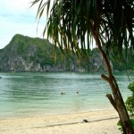 island_halong_bay_vietnam